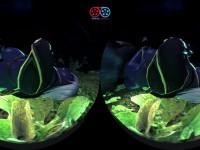 Werewolf Cuddle VR Sex with Dark Night Elf, CGI Animation guhhyuk CGIGirl vr porn video vrporn.com virtual reality